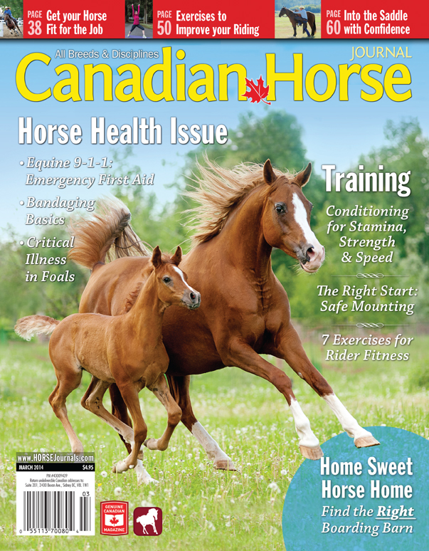 Canadian Horse Journal Magazine Canadian Horse Journal March
