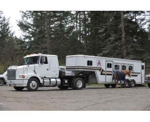 horse trailer accidents