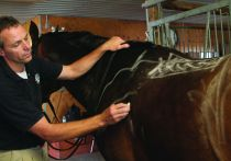 Beyond the 9 Points of Saddle Fitting DVD